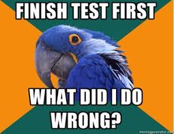 Paranoid Parrot Memes - paranoid parrot know your meme