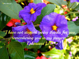 giving thanks on thanksgiving day flowery blessing u201ci have not stopped giving thanks for you