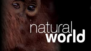 bbc two natural world 2013 2014