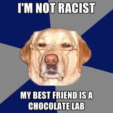 Chocolate Lab Meme - i m not racist my best friend is a chocolate lab create meme