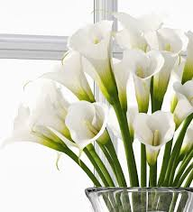 calla bouquet 3d calla bouquet cgtrader