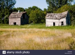 old farmhouses in a field stock photo royalty free image