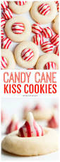 recipe file candy cane kiss cookies christmas cookies cookie