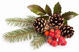christmas mistletoe christmas seasonal border of mistletoe stock image image