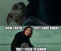 15 harry potter memes those are dumb yet so great page 5 of 5