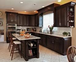 Oak Cabinets Kitchen Ideas Modern Kitchen Cabinet Magnificent Black Kitchen Dark Floor