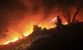 California Wildfires Pets by The Latest On California Wildfires Wildfire Destroys Schultz Home