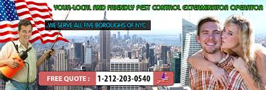Bed Bugs New York City Bed Bug Map