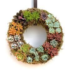 succulent wreath multi colored succulent wreath for your home vivaterra