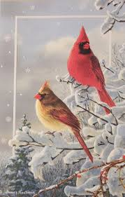 pumpernickel press cards cheap bird christmas cards find bird christmas cards deals on