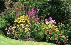 Wildlife Garden Ideas Higgy S Garden Project As Seen On Springwatch