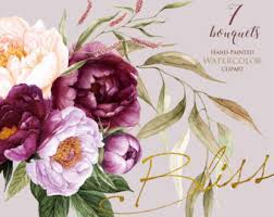 peonies flowers peonies flowers watercolor floral elements burgundy violet