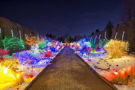 Denver Botanic Gardens Blossoms Of Light Denver Botanic Gardens Denver Attractions