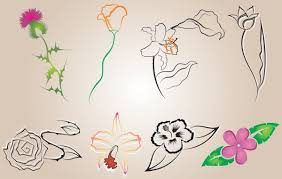 flower sketches simple lines background vector free download