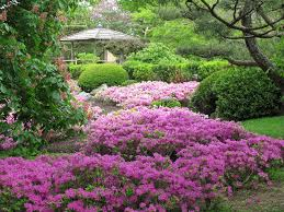 Botanical Gardens In Illinois 21 Of The Best Botanical Gardens To Visit This
