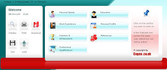 resume creators professional video resume shelly youtube