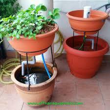 affnan s aquaponics ornamental aquaponics set 2nd prototype