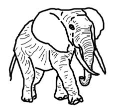 Coloriage éléphant  Le blog de LUDOVICA
