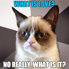 Cat Meme Maker - grumpy cat hears the music but doesn t know the words imgflip