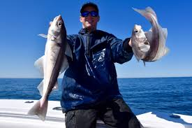 reel deal fishing charters cape cod fishing charters in truro