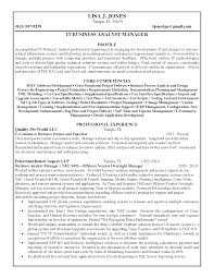 Systems Analyst Resume Example by Good Looking Core Competencies It For Business Analyst Resume