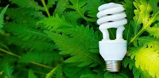 maximum wattage for light fixture using cfls in light fixtures today s homeowner