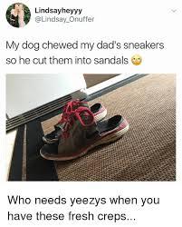 Meme Sneakers - 25 best memes about sneakers sneakers memes