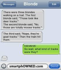Blonde Moment Meme - blonde puns