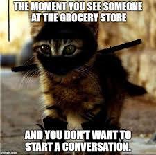 Ninja Meme - ninja cat meme generator imgflip