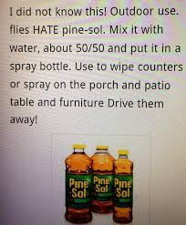 how to keep bugs away from porch this really works i ve done it a couple of times this summer and