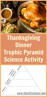it science thanksgiving dinner trophic pyramid activity