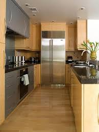Kitchen Galley Design Ideas Small Galley Kitchen Designs Homes Abc