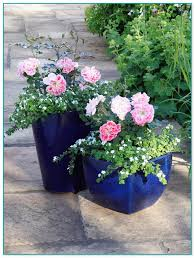 container flower gardening ideas 9