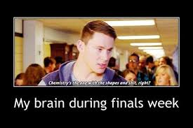 Funny Finals Memes - 20 really funny finals memes that ll make you feel better word