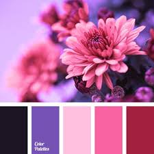 Colors That Match With Purple 900 Best Color Sets Images On Pinterest Colors Colour Palettes