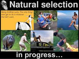 atheism 4 atheists natural selection in progress