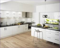Formica Laminate Kitchen Cabinets Uncategorized Plastic Laminate Kitchen Cabinet Doors Can Formica