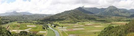 bureau vall dole kauai