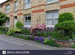 Garden Wall Railings by Long And Narrow Front Garden With Iron Railings Packed With