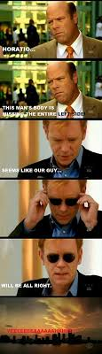 Horatio Caine Meme - 27 best lines with horatio images on pinterest ha ha david caruso