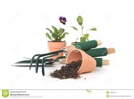 gardening tools on white background royalty free stock photography