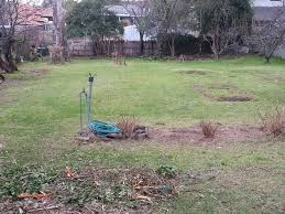 another round of clearing reveals the original land our green