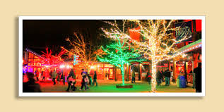 zoo lights at hogle zoo zoo lights at utah s hogle zoo utah adventures pinterest zoo