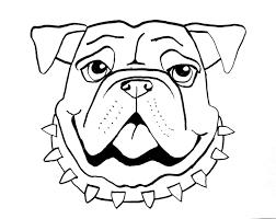 smart class bull dog draw a long
