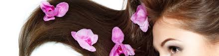 Hair Extension Classes by Hair Extension Academy Blog Get The Latest Course News