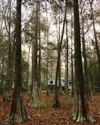 campground review disney u0027s fort wilderness resort u0026 campground in