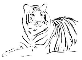 tiger design by seranatis on deviantart