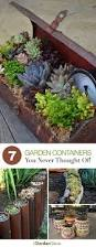 Indoor Garden Containers - 98 best container gardening images on pinterest herb gardening