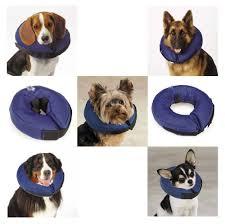 collar soft alternative to elizabethan collars to