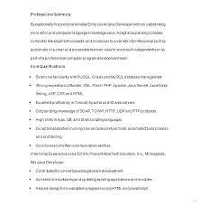 junior java developer resume sample template gorgeous screenshoot
